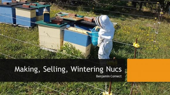Presentation - On Selling Nucs - 2020